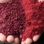 red yeast rice malaysia