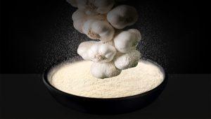 garlic powder malaysia