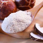 mushroom powder malaysia